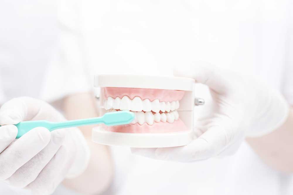 最先端の予防歯科
